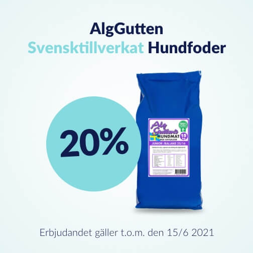 20 % rabatt på AlgGuttens hundfoder 4 kg